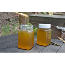 Organic Natural Bee Vitex Honey